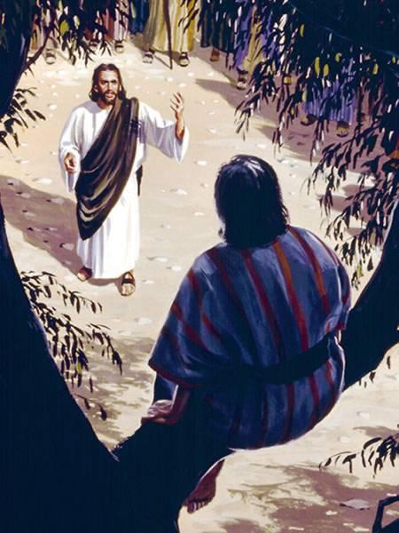 clipart jesus and zacchaeus - photo #29