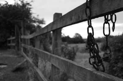 Chains by Nicholas Tarling