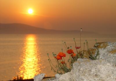Sunrise By the Sea © Mlan61